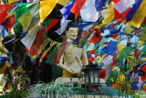 The Benevolence of Buddhism to India