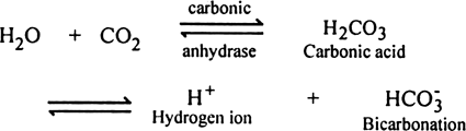 Comment upon the transportation of carbon-dioxide.