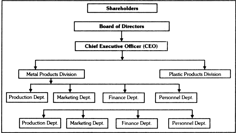 Draw A Diagram Depicting A Divisional Structure From Business