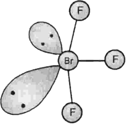 describe the molecular shape of brf3 on the basis of vsepr