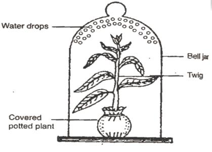 visio block diagram template visio electrical diagram