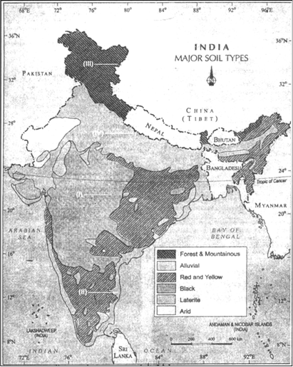 On the political map of india identify the soil types in i ii i black soil ii red and yellow iii mountainous and forest soil iv alluvial soil altavistaventures Image collections