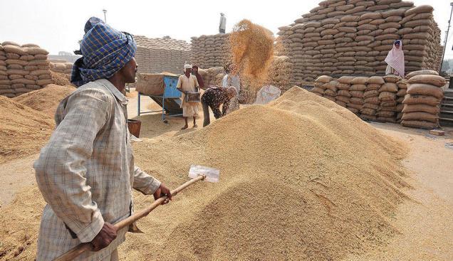 Zigya.com: The Flourishing Haryana
