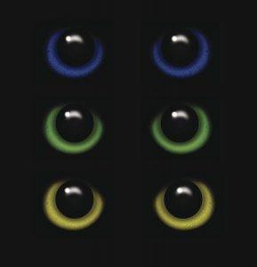 Zigya.eyes3