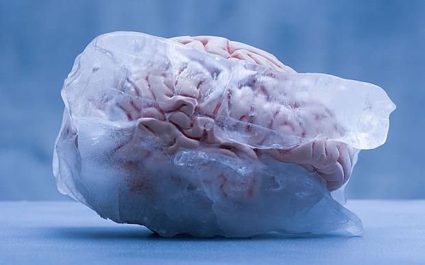 zigya.com:brainfreeze