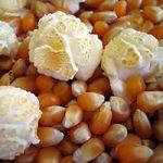 mushroom-popcorn-kernels-2