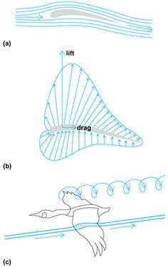 Induced drag in V formation