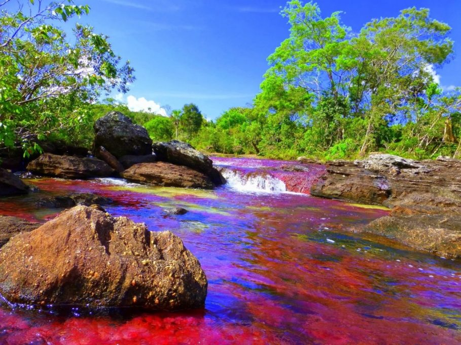 River of five colours