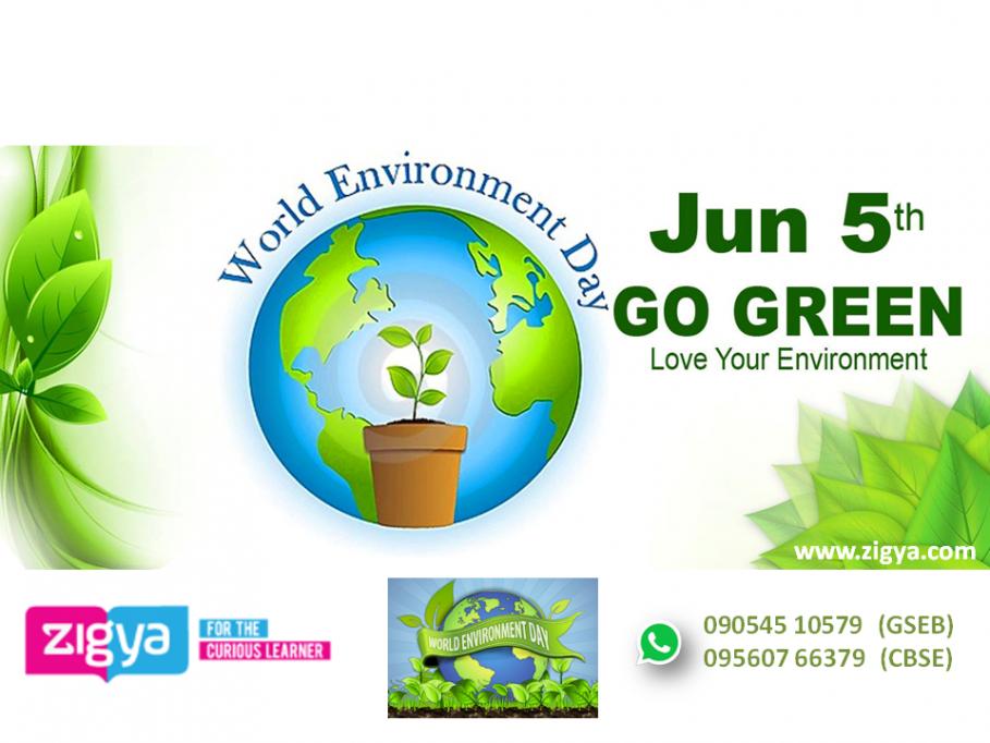 'વિશ્વ પર્યાવરણ દિવસ'