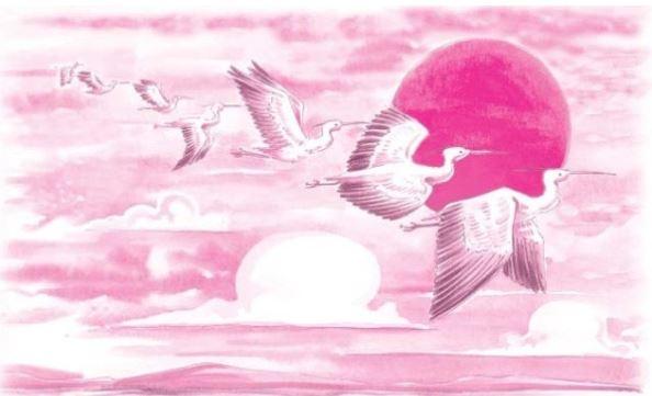 बगुलों के पंख